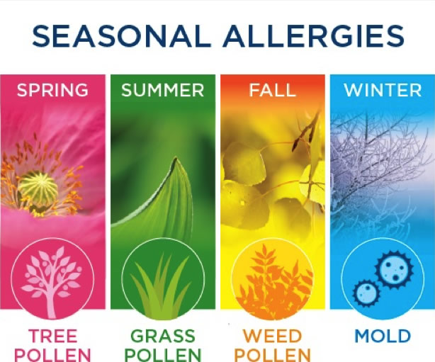 Spring into Action and Take Control of Your Seasonal